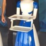 Robot camarero alquiler