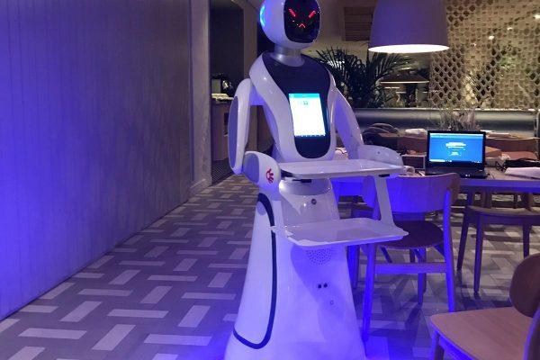Camarero Robot