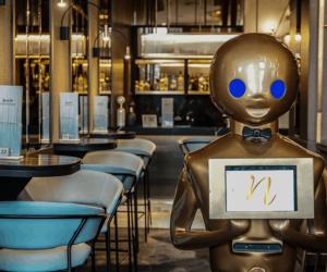 Robots Para Negocios